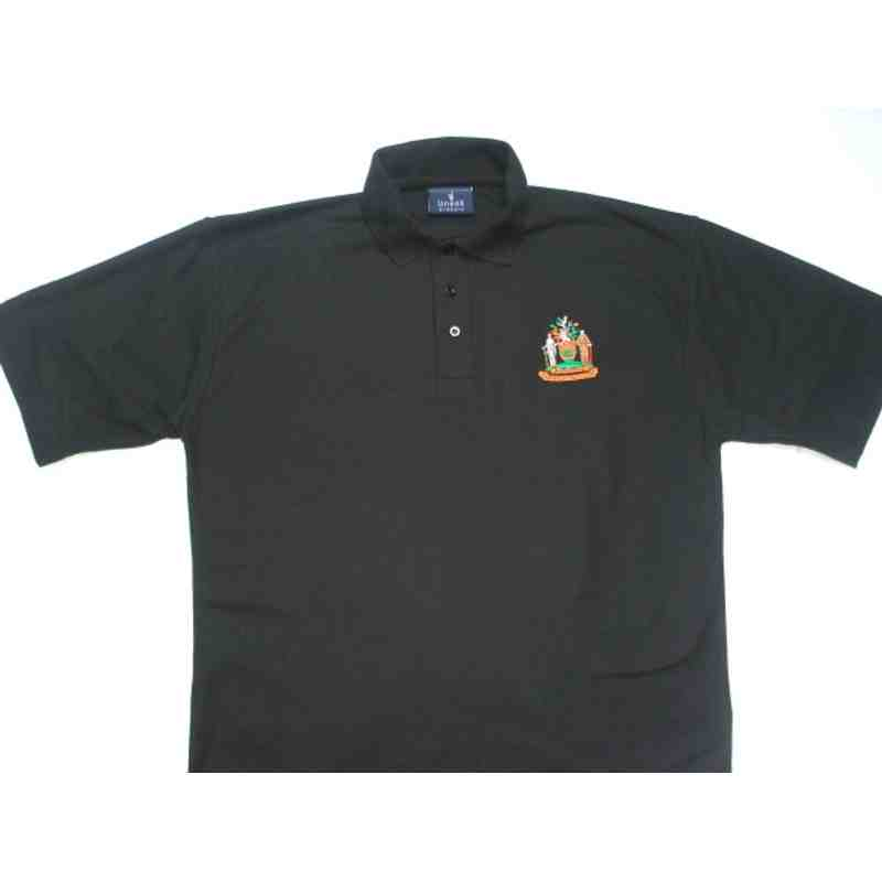 Polo Shirt (not Nike)