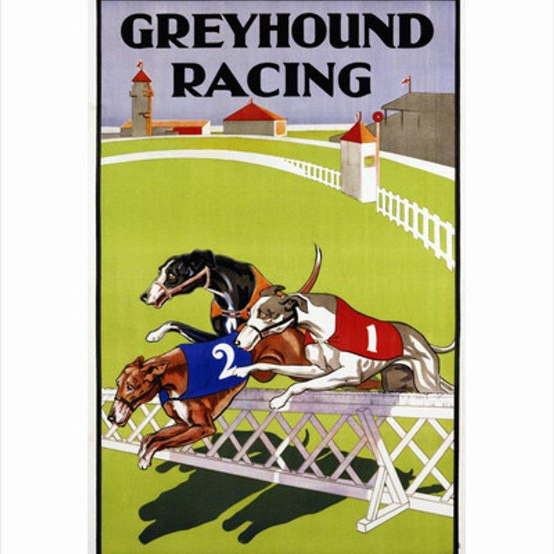 Greyhound Race Night