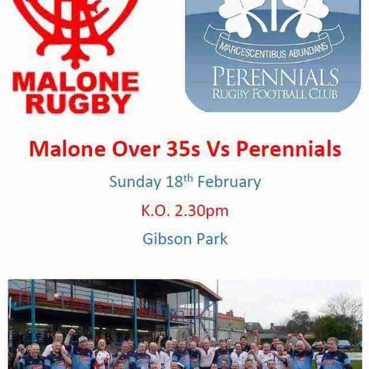 Malone over 35's - v - perennials