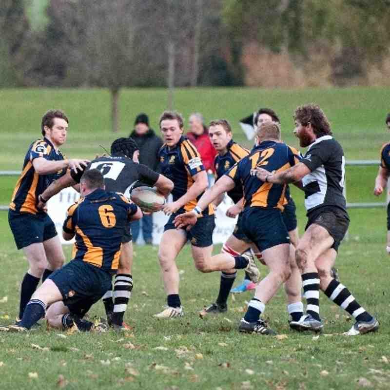 Perthshire v Gordonians 16.11.2013
