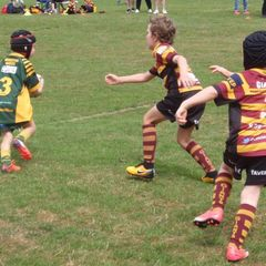 Latchford Giants 7's v Woolston Rovers 7s