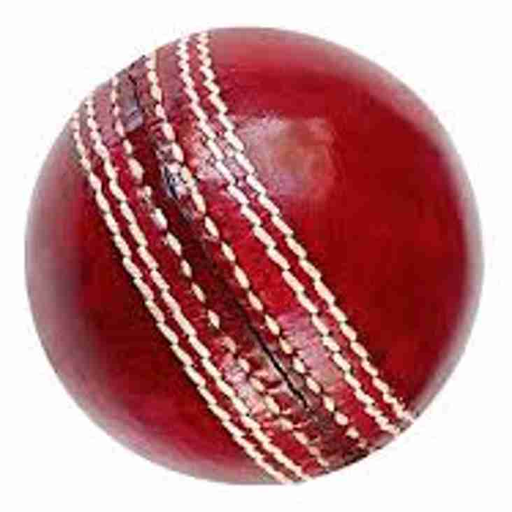 Summer Cricket match at Oldbury