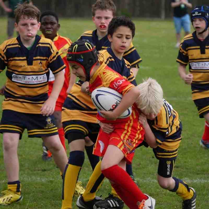 Primary U11 London Skolars May 2014