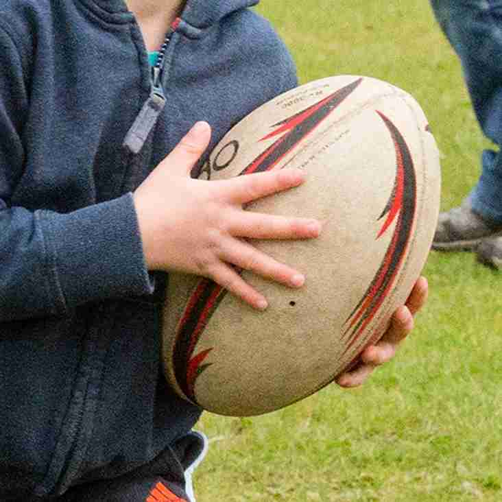 Little Ruggers Continues Plans for the Future