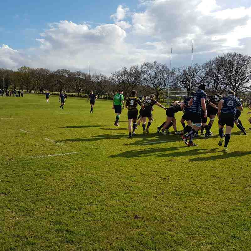 BRFC 1st XV vs. Old Alleynians 1 April 2017