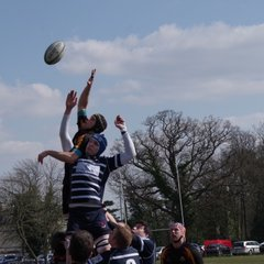 Harrow vs OMT 6/4/13