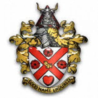Home defeat by Cheshunt