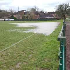 Minis training at Haybridge on Sunday