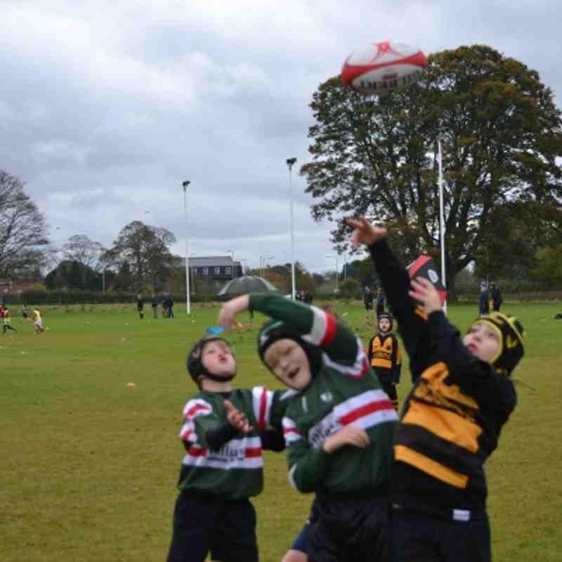 Wrexham Under 10s vs Telford