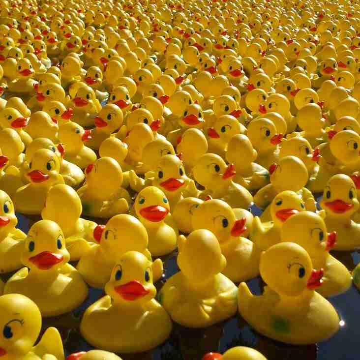 £300 to win in the Govan Duck Race!