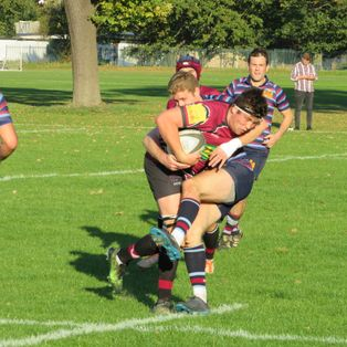 King's score last minute try to secure win over Cranbrook