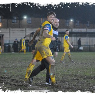 Tulips Turn On The Style At Leek Town