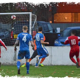 Tulips Suffer Another Home Defeat
