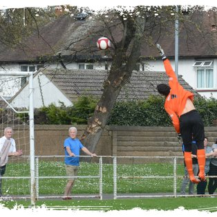 Tulips Lose Final Home League Game To Leek