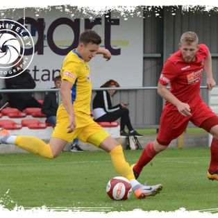 Five Draws in Six Outings For Tulips