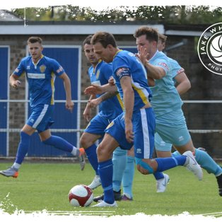 Tulips Earn Share Of Spoils At Dynamo