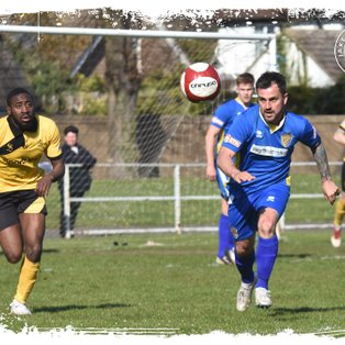 Woeful Tulips Deliver Lacklustre Show When More Was Needed