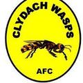 YWFC v Clydach Wasps