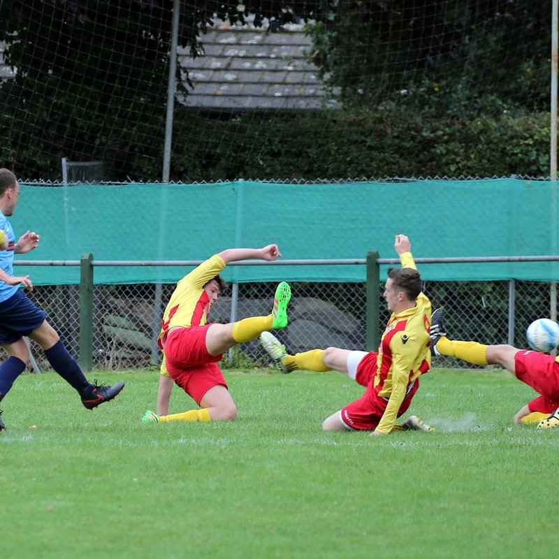 Lingfield FC 4 Steyning Town FC 3