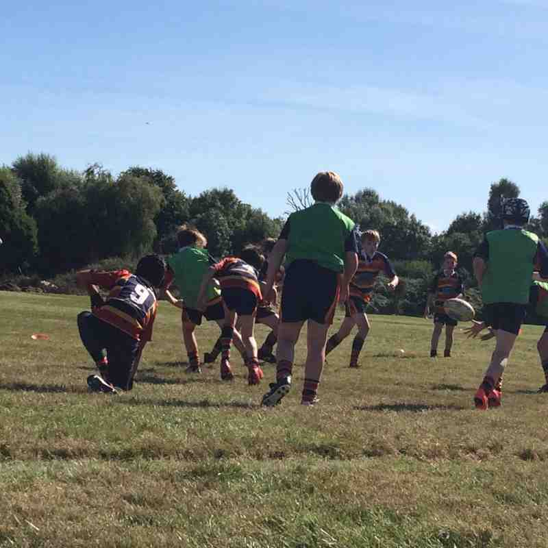 U11s 2016 - rugby in the sunshine
