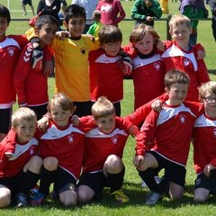 Shire Colts U9 - General Photos