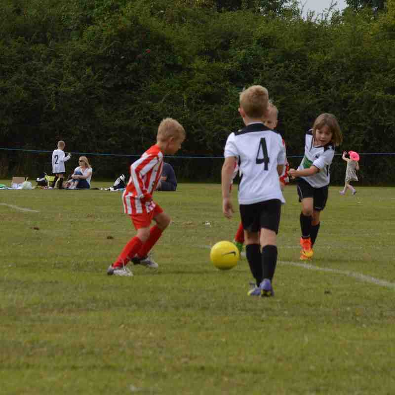 U7's Tigers Loughboro' Tournament 8th August 2015