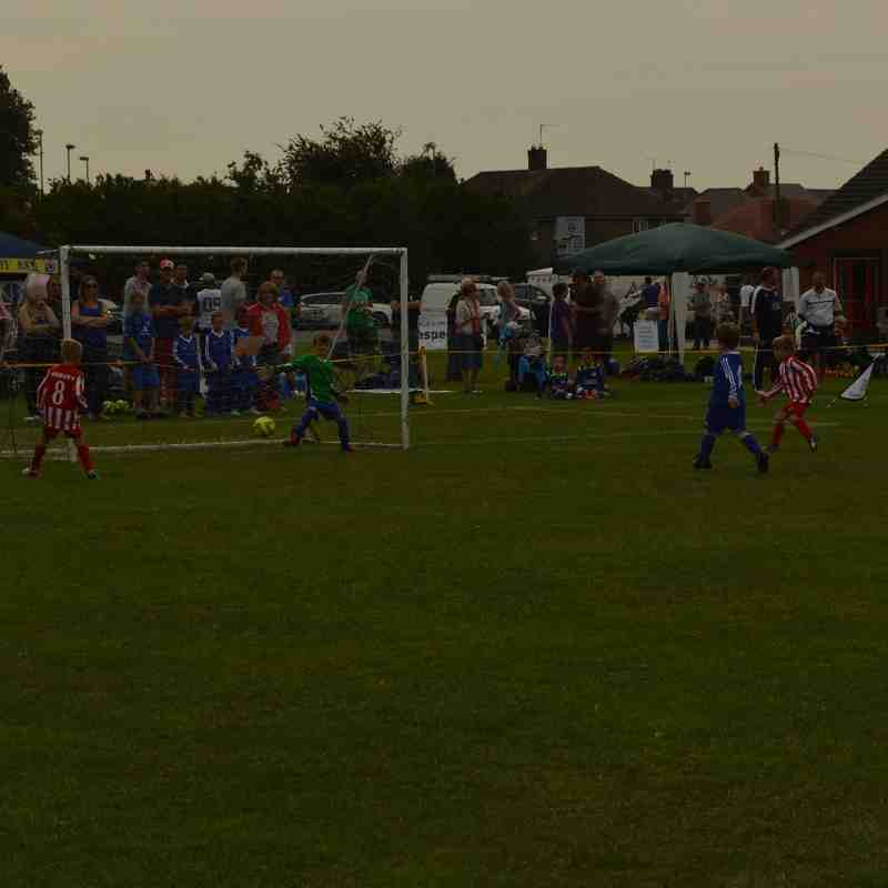 Ibstock U7s Tournament 2015