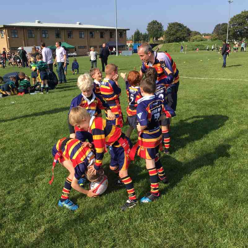 U8 Kings Festival 4th October 2015