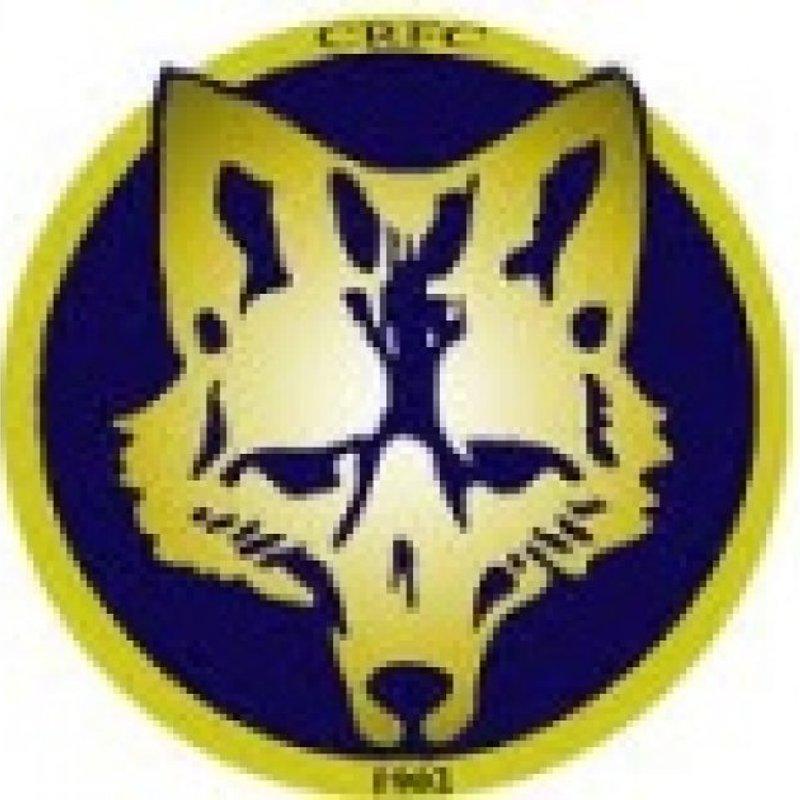1ST XV Match Report - Dronfield v Coalville