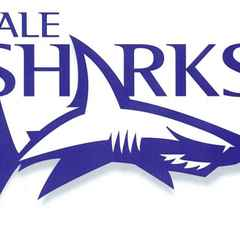 Sale Sharks Camp at Kendal 16/17th August 2016