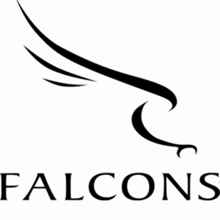 Newcastle Falcons Rugby Camp at Kendal Summer 2017