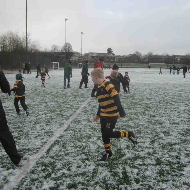 Minis Training in the Snow Today Jan 2015