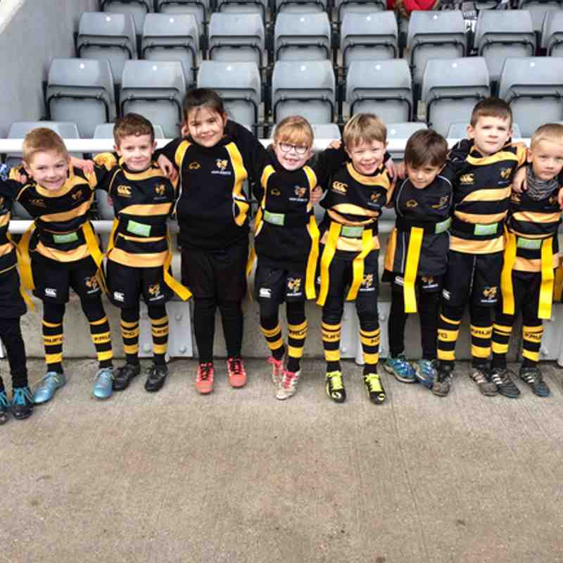 U7s Newcastle Falcons Festival