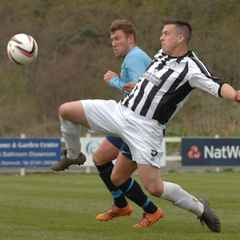 Magpies share the spoils in the wind