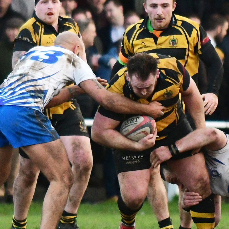 Hornets share honours with Lions