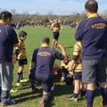 Sunshine Rugby !