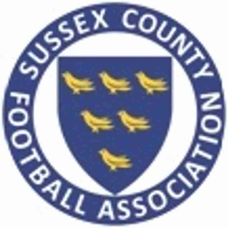 Saturday 25th August Anvils lose away at Hassocks 1-2