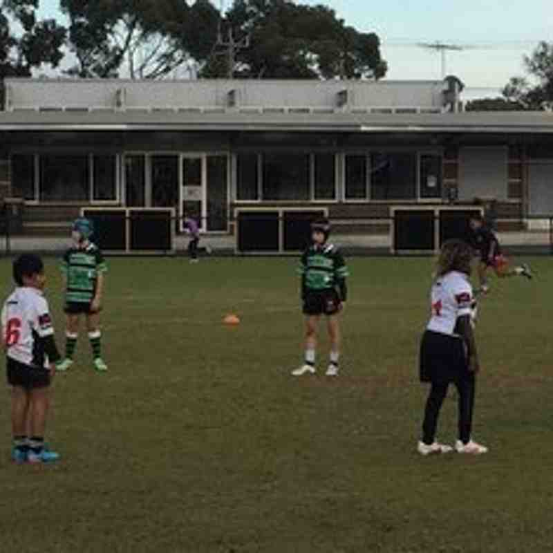 U9 Moorabbin v Power House 2015-06-13