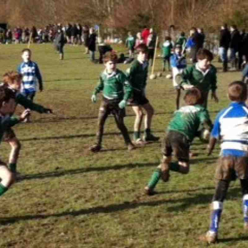 U11s at Lewes RFC 27 January 2013