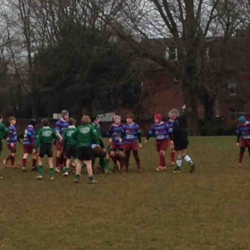 U12s at H Cup 23 February 2014