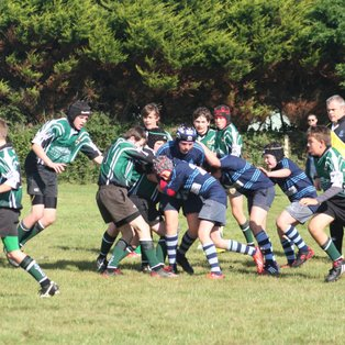 U13s away at Chichester RFC