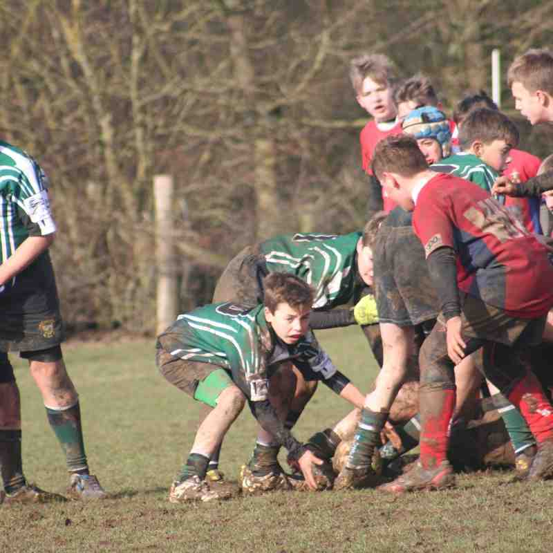 U13s Friendly vs Aylesford RFC 22 February 2015