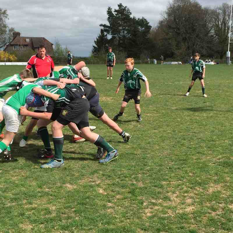 U13s at East Grinstead Sunshine Sevens 19 April 2015