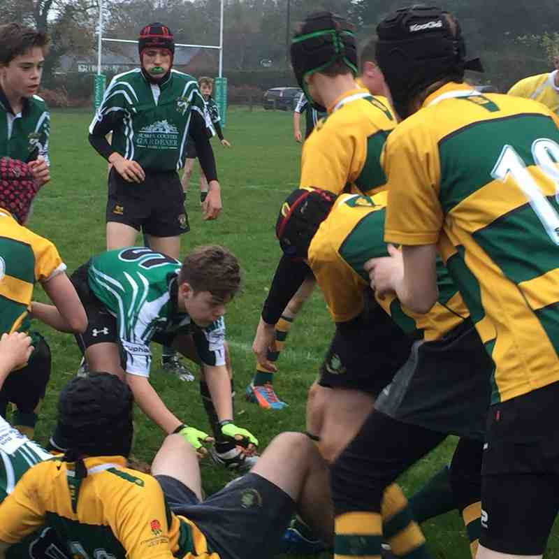 U14s League Match vs Shoreham RFC 8 November 2015