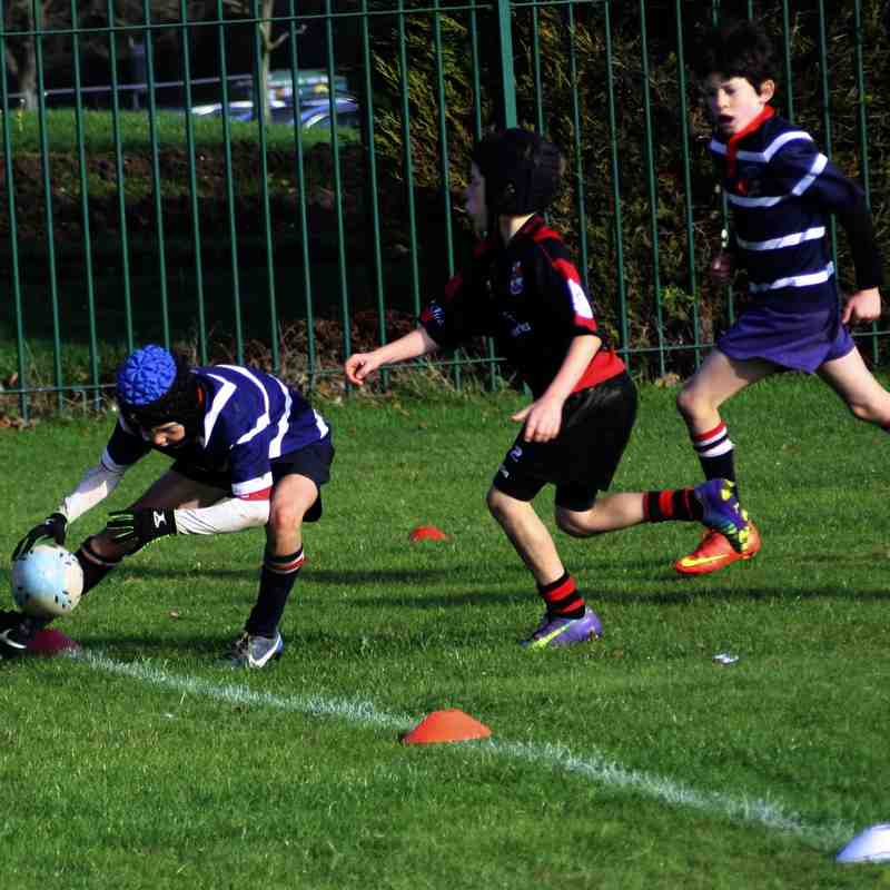 Moseley v Stourbridge RFC Under 10s
