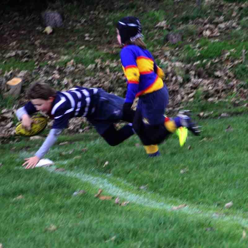 Stourbridge Under 10s v Old Halesonians - 7 December 2014