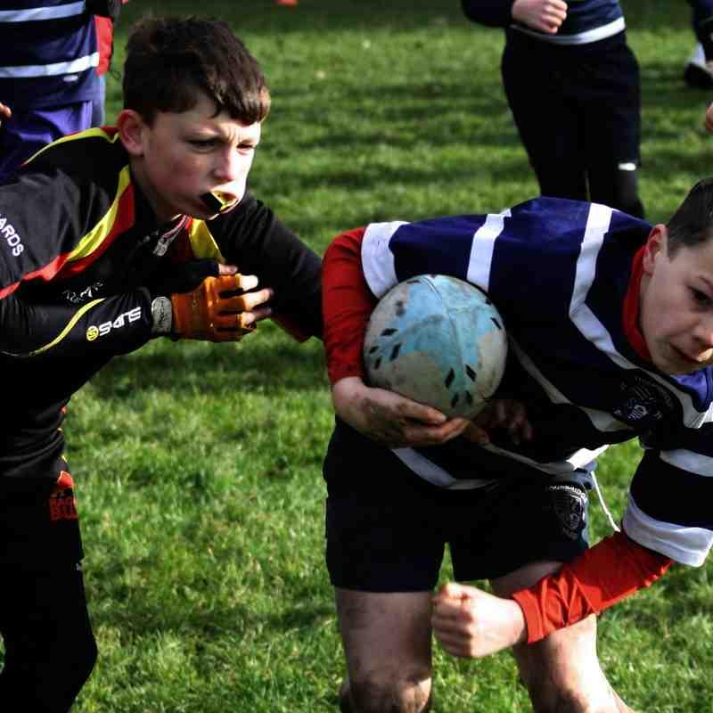 SRFC Unders 10s v Bredon, 1 February 2015
