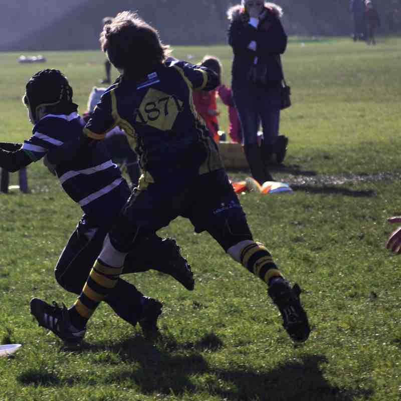 Worcester v SRFC Under 10s, 8 February 2015
