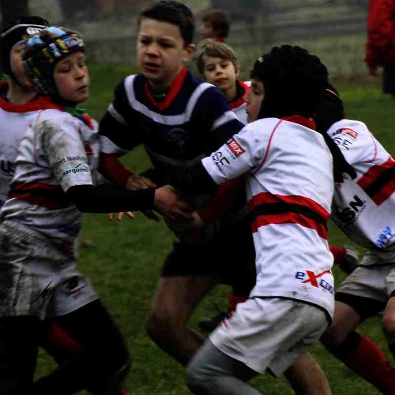 SRFC Under 10s v Bromsgrove, 15 February 2015