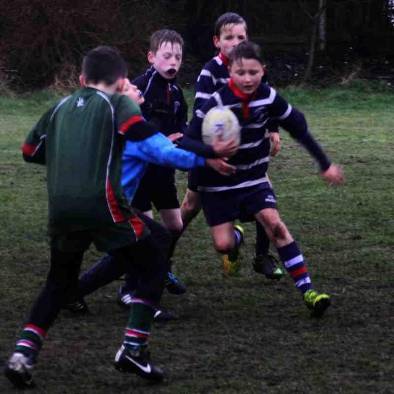Aston Old Edwardians v SRFC Under 10s, 8 March 2015